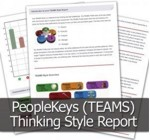 TEAMS Thinking Style DISC